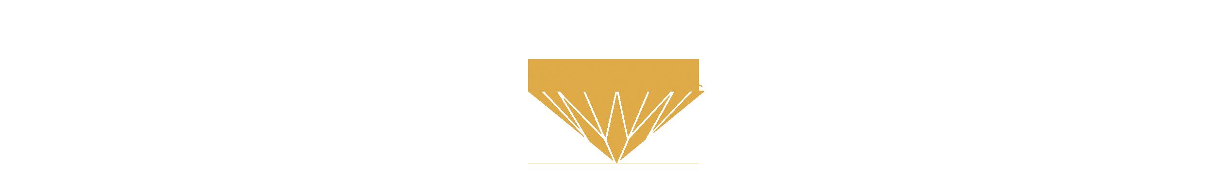 binninger diamanten